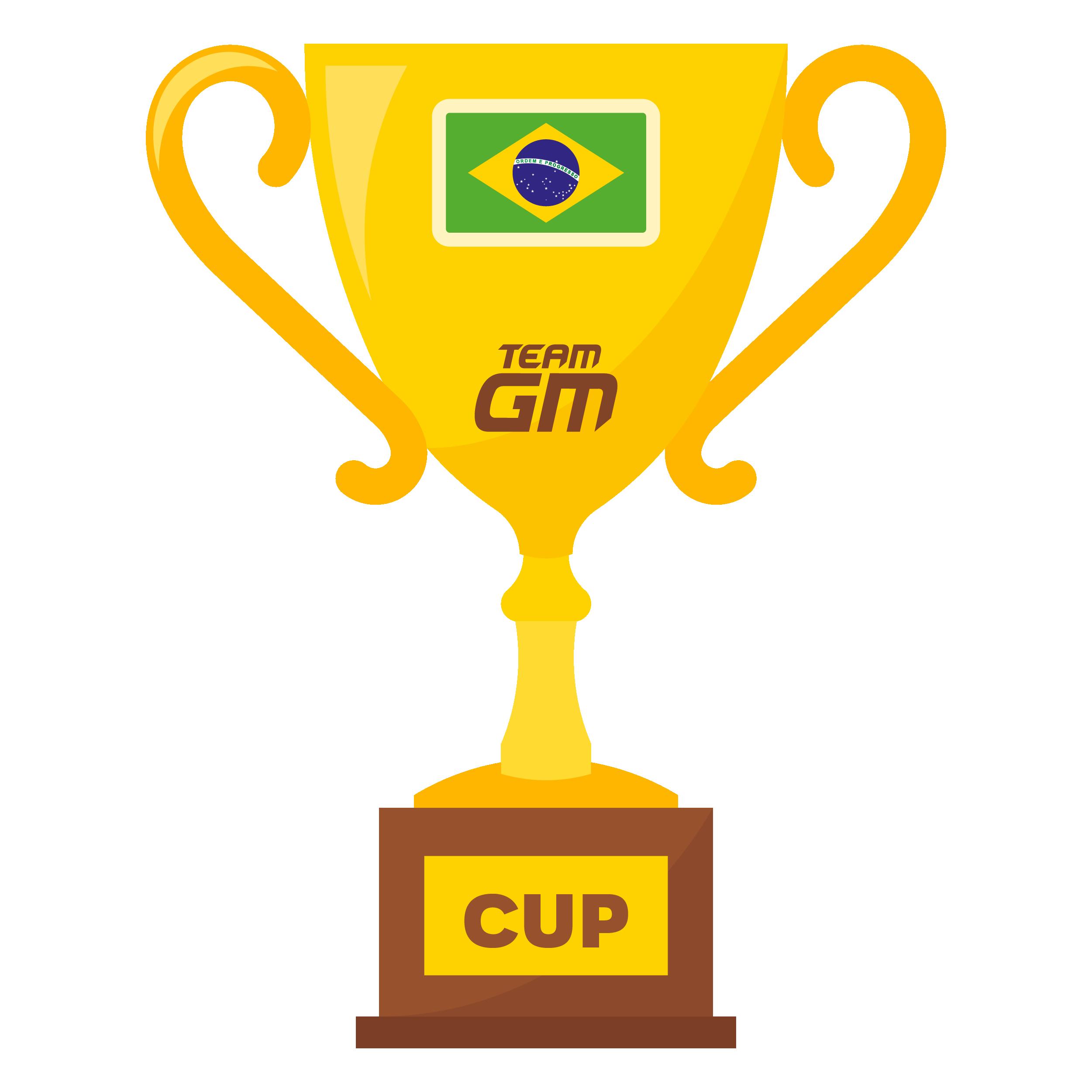 3RD - BRAZILIAN CUP